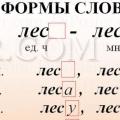 Что такое форма слова?