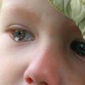 Что такое плач?