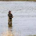 Где ловится рыба?