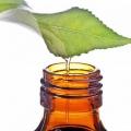 Масло чайного дерева для отбеливания зубов: отзывы стоматологов