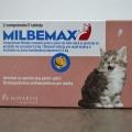«Мильбемакс» для кошек: отзывы, инструкция