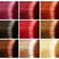 Палитра красок для волос. палитра цветов краски для волос