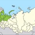 С кем граничит россия?