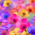 Толкование снов. к чему снятся цветы