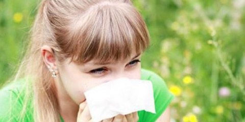 Что вызывает аллергию?
