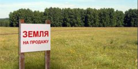 Покупка земли сельхозназначения в украине